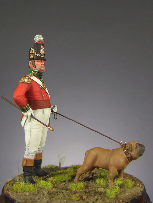 Figures: Officer, heavy infantry regt., England 1809, photo #1