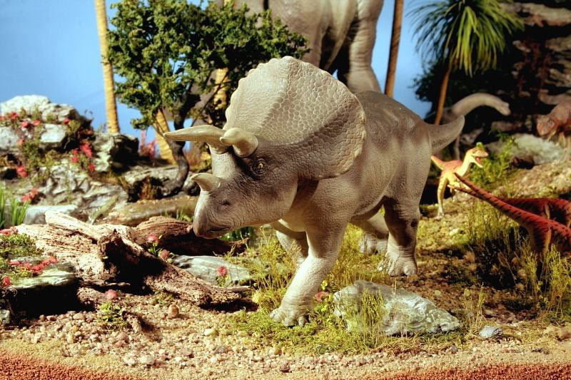 Dioramas and Vignettes:  Bank Holiday. Late Cretaceous., photo #3
