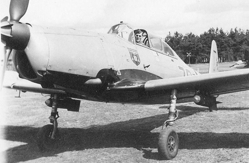 Dioramas and Vignettes: Arado Ar-96B, photo #9