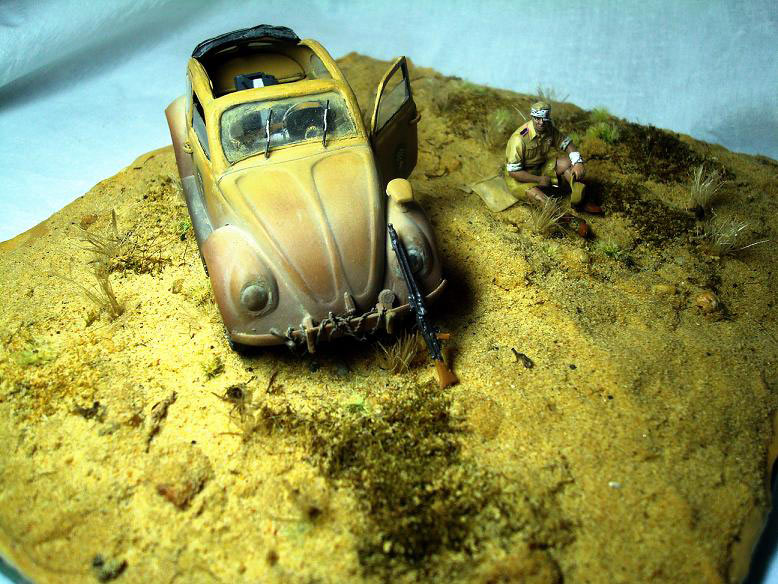 Dioramas and Vignettes: African Beetle, photo #1