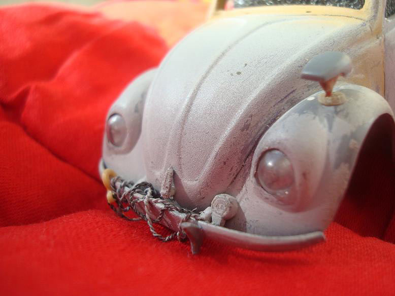Dioramas and Vignettes: African Beetle, photo #12