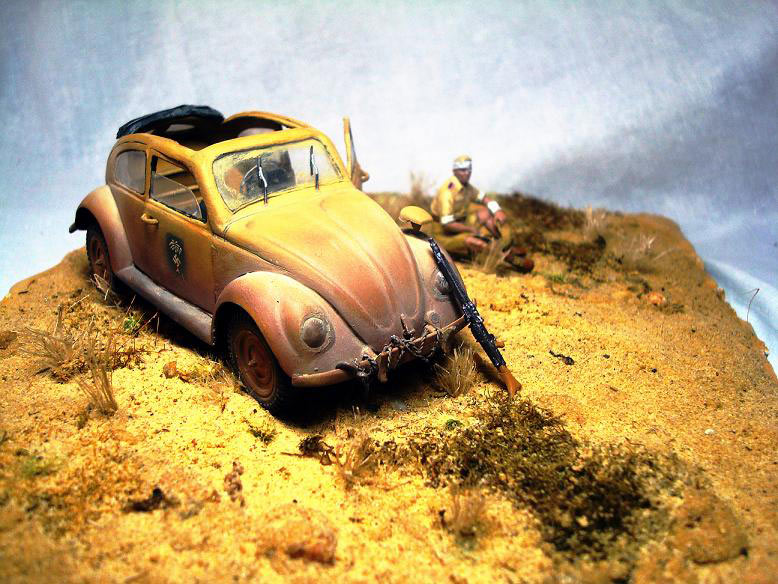 Dioramas and Vignettes: African Beetle, photo #2
