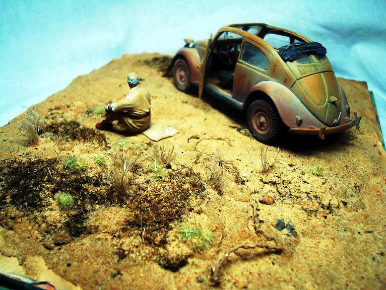 Dioramas and Vignettes: African Beetle, photo #3