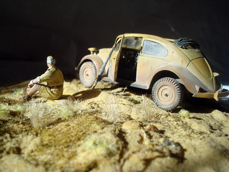 Dioramas and Vignettes: African Beetle, photo #4