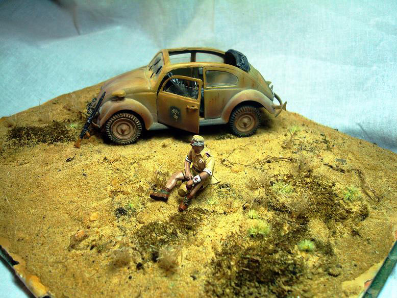 Dioramas and Vignettes: African Beetle, photo #5