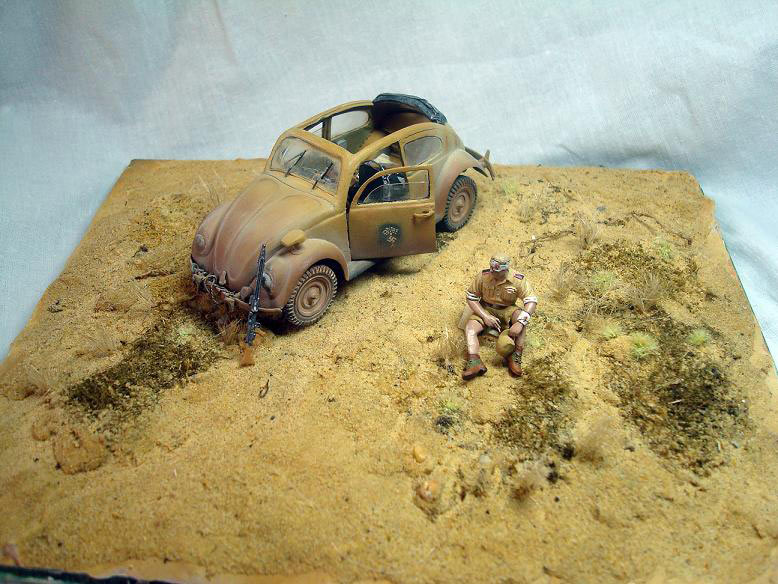 Dioramas and Vignettes: African Beetle, photo #6