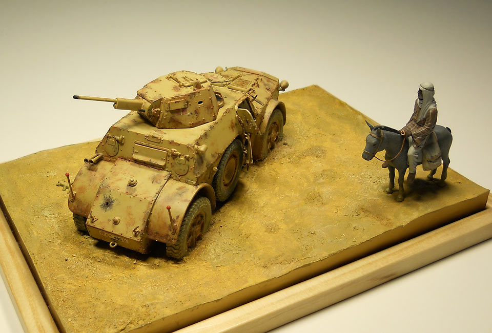 Dioramas and Vignettes: Echo of the desert war, photo #3