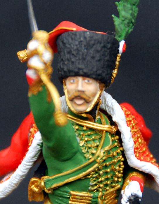 Training Grounds: Officer, Emperor's Guard chasseurs, photo #10