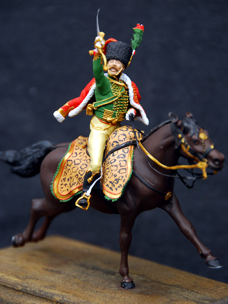 Training Grounds: Officer, Emperor's Guard chasseurs, photo #4