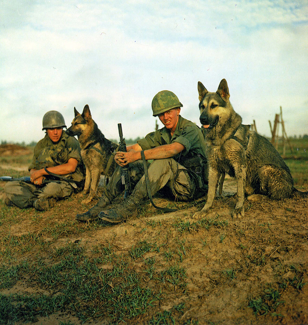 Dioramas and Vignettes: Scout with a dog. Vietnam, photo #15