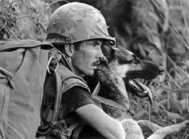 Dioramas and Vignettes: Scout with a dog. Vietnam, photo #16