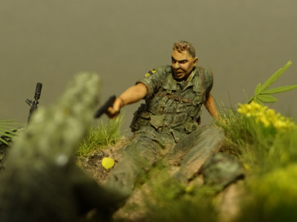 Dioramas and Vignettes: Wild world, photo #6