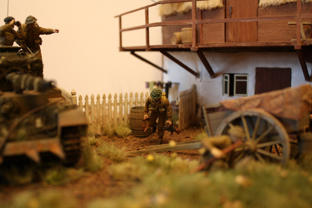 Dioramas and Vignettes: Tiger behind the corner!, photo #4