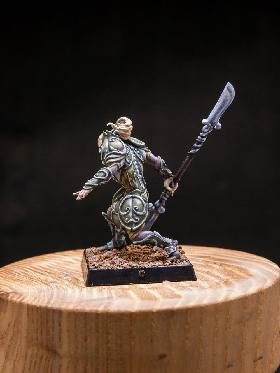 Miscellaneous: Elves of Silver Guard , photo #3
