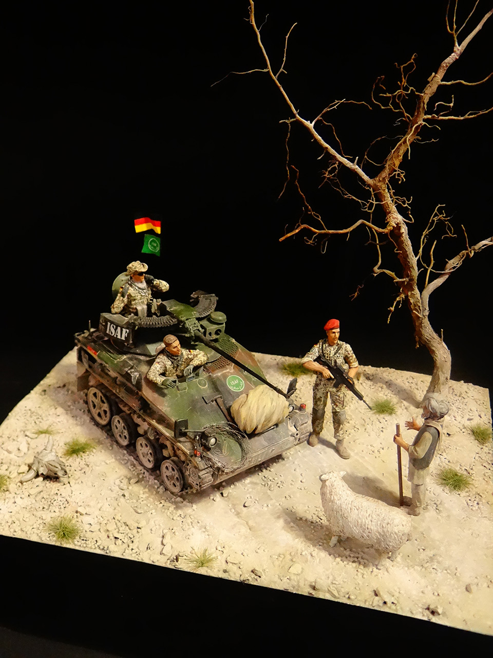 Dioramas and Vignettes: Wiesel, photo #4