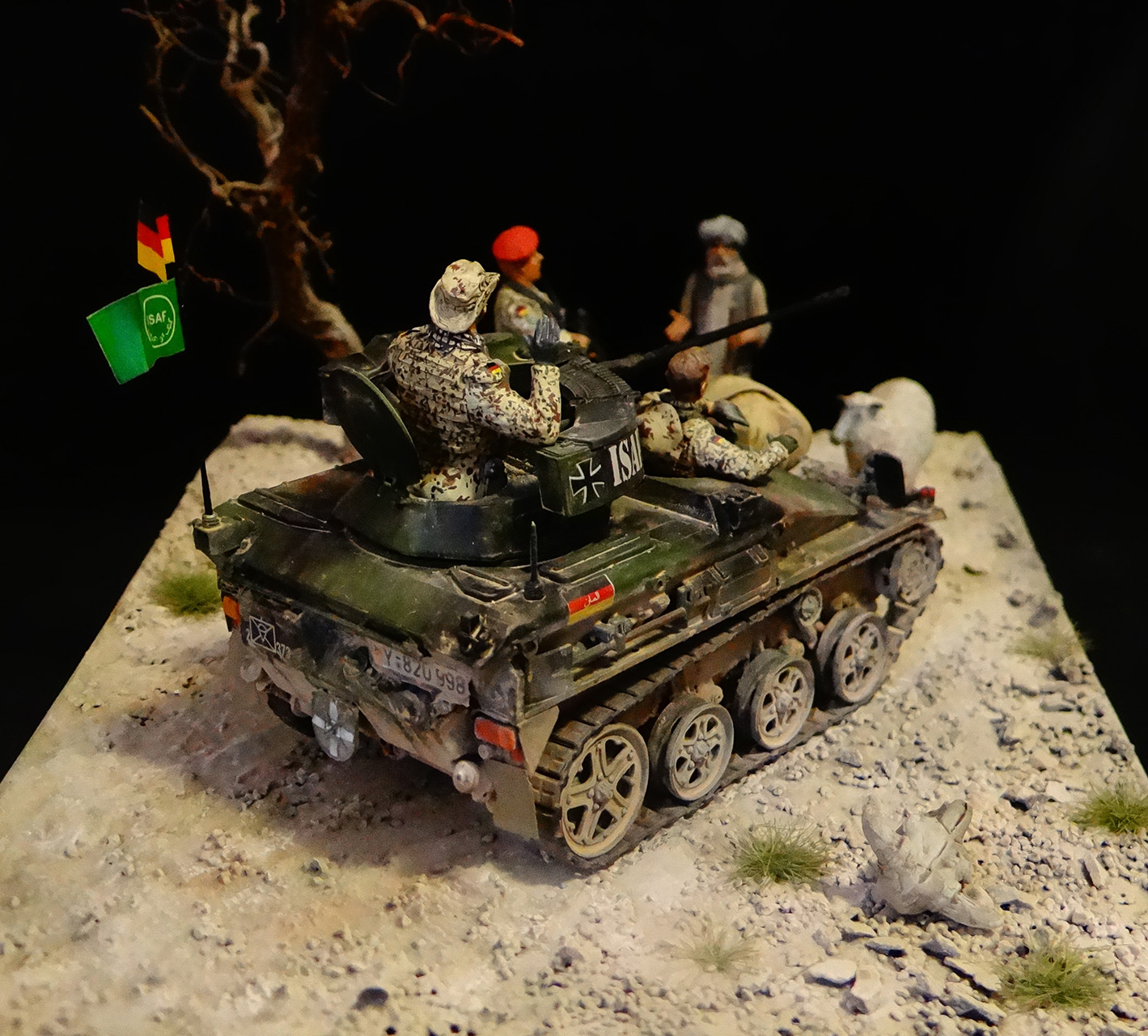 Dioramas and Vignettes: Wiesel, photo #6