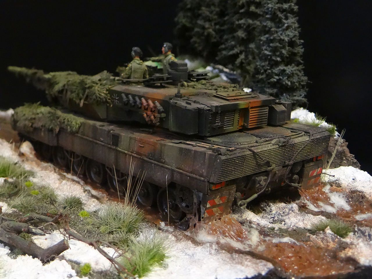 Dioramas and Vignettes: Leopard, photo #7