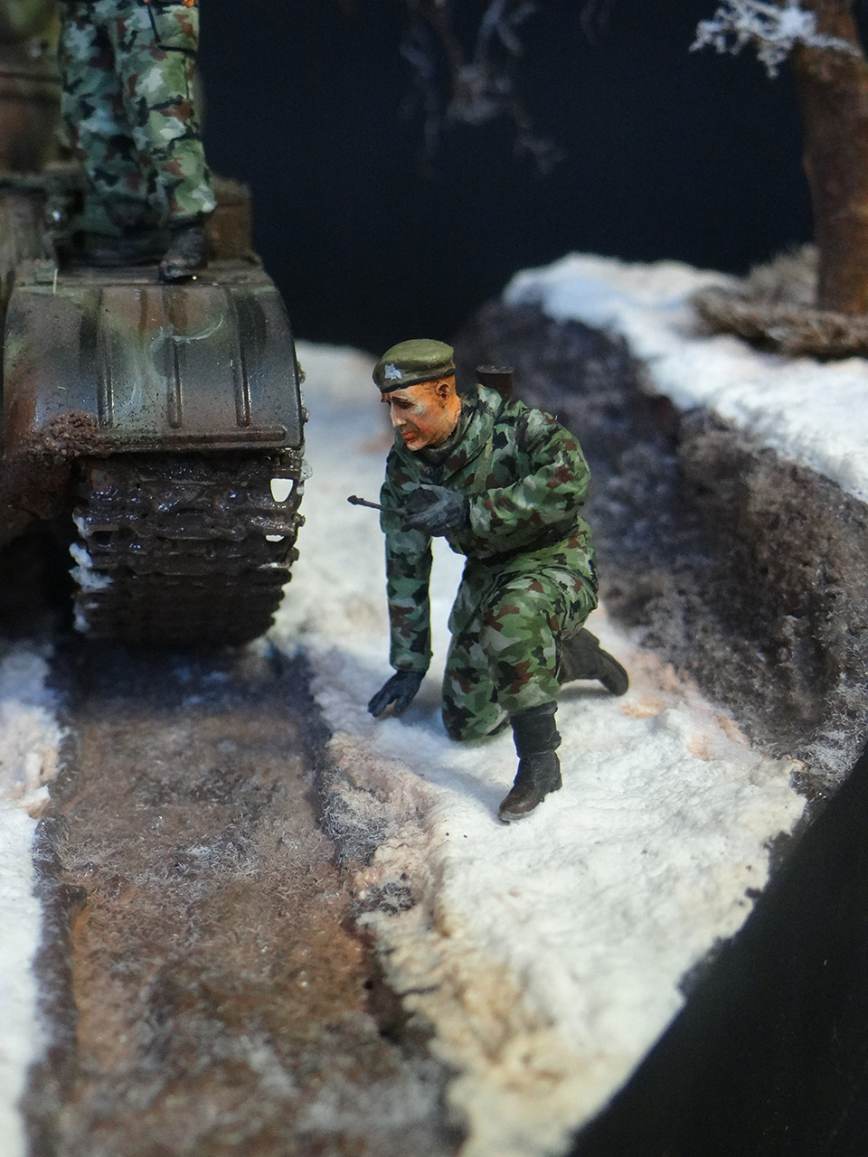 Dioramas and Vignettes: T-55A, photo #10