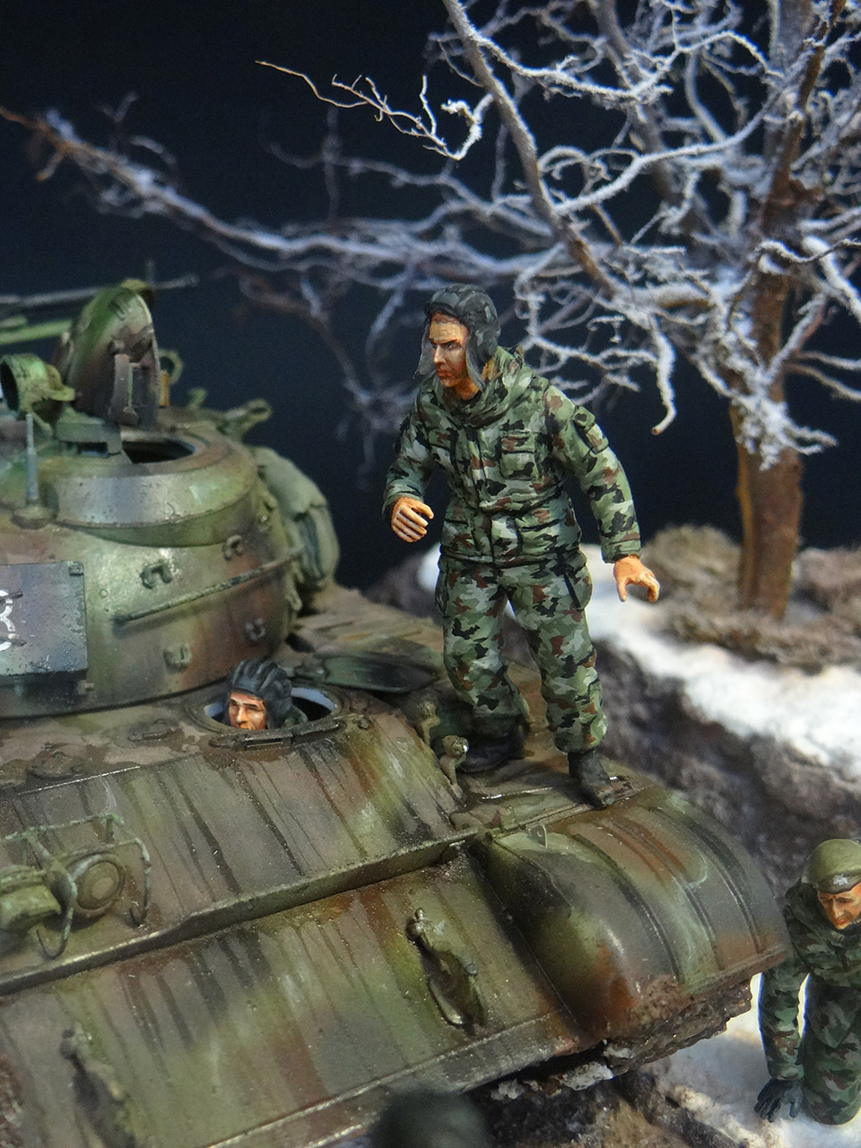 Dioramas and Vignettes: T-55A, photo #11