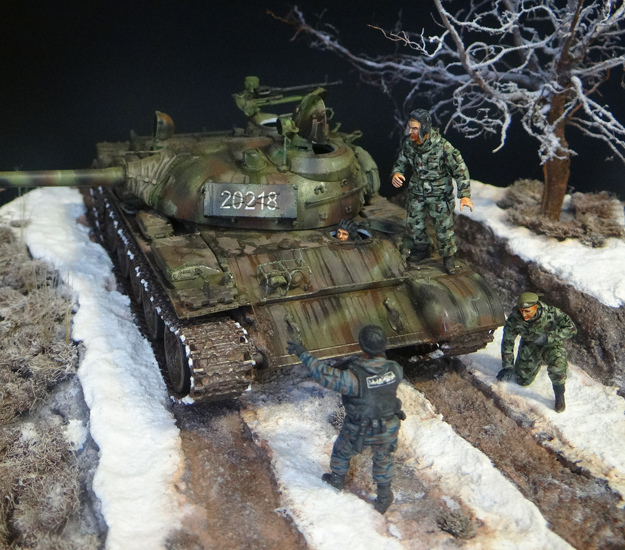 Dioramas and Vignettes: T-55A, photo #3