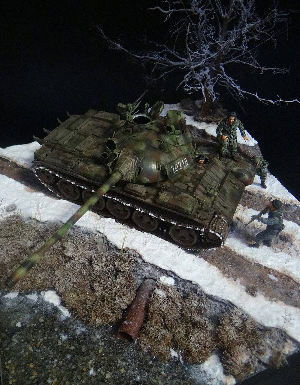 Dioramas and Vignettes: T-55A, photo #5