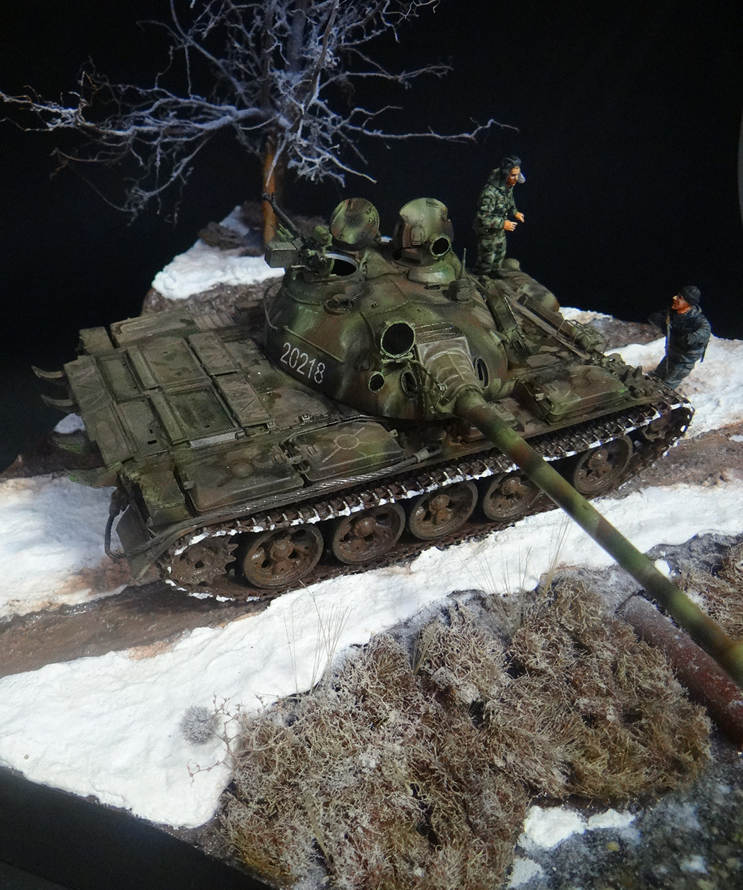 Dioramas and Vignettes: T-55A, photo #6