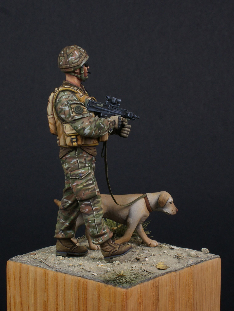 Figures: Patrol in Helmand, photo #9