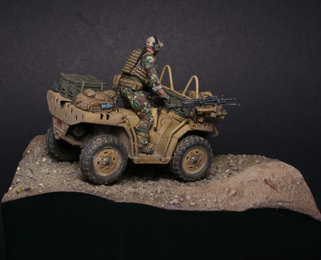 Dioramas and Vignettes: Modern cavalry. MARSOC, photo #10