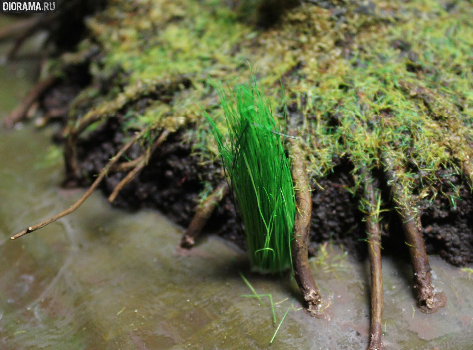 Features: Making a wetland, photo #39