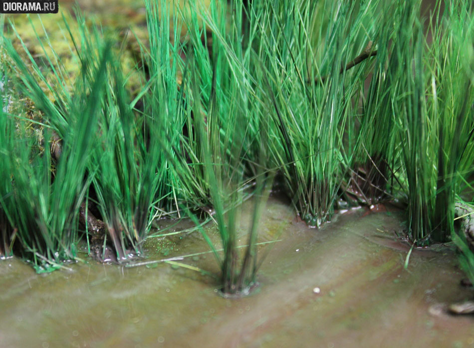 Features: Making a wetland, photo #43