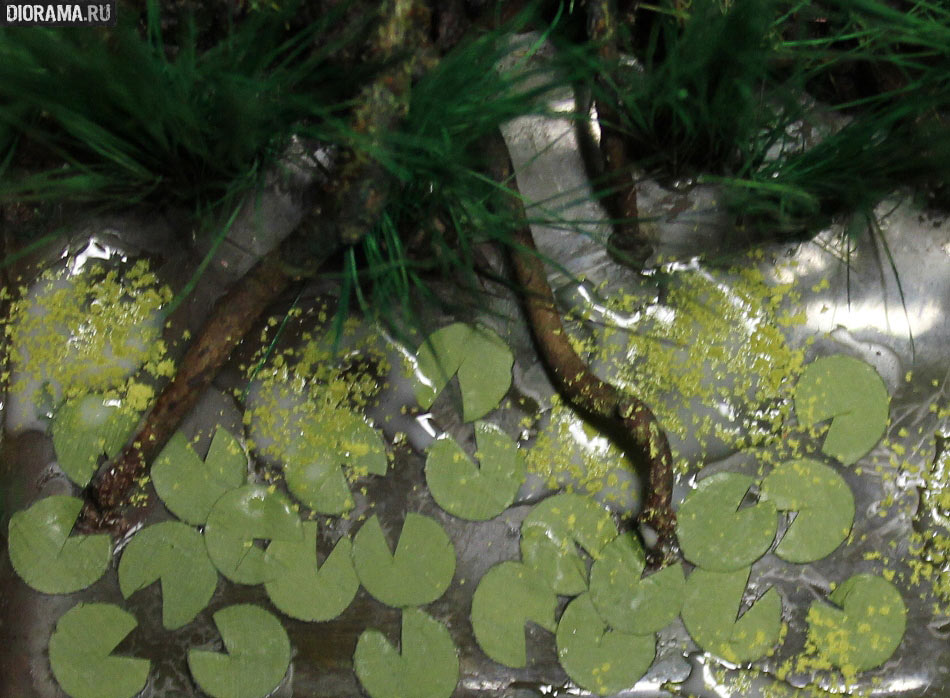 Features: Making a wetland, photo #57