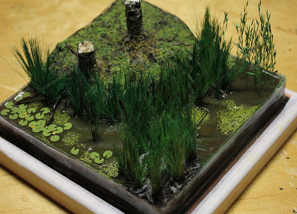Features: Making a wetland